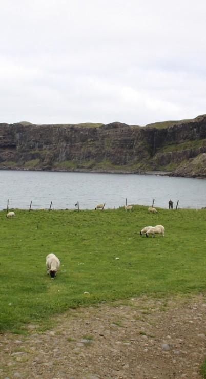 The Talisker Bay (8)